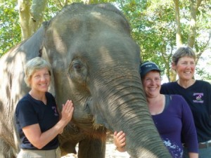 Elephant Trek with Adventure Women