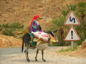 woman and donkey two
