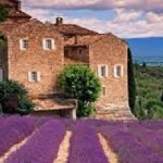 Cook in Tuscany – Truly All Inclusive