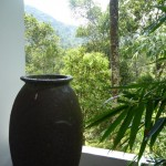 Head for the Hills in Kerala for a Cool Break